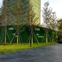 绵阳绿植草皮墙多少钱一平米图片