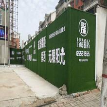 乐山绿植草皮墙生产经验丰富图片