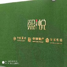 海南绿植草皮墙草丝坚韧耐磨图片