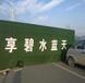 淮北1公分厘米圍擋假草坪價格商品介紹