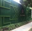 中宁县绿色假草坪墙面怎么搭设
