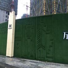 臨滄鋼架仿真綠植圍擋價格生產廠家