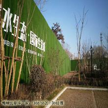 工地墙面人造草皮厂家《价格》_巴音郭楞若羌县诚信商家图片