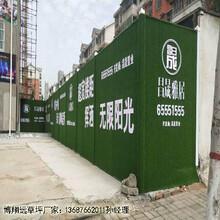 咸阳市墙面装饰草坪多少钱_图片大全图片