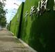 迪慶草坪外墻面——材料施工一體化