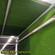 门球场地毯草坪