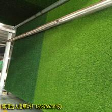 博翔远牌网球场人造草坪多少钱一平方图片