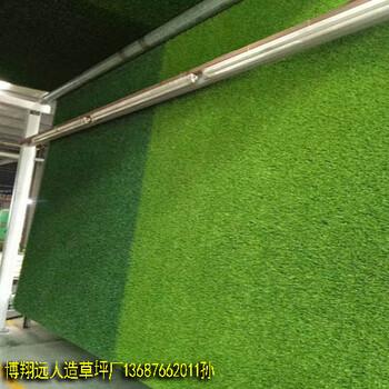 榆林景区塑胶草坪哪里有卖的
