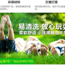 2.5CM装饰人造草坪价格图片
