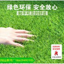 厂家直销足球场人工草坪高度图片