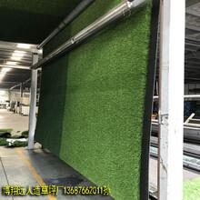 3.2CM塑料仿真草坪怎么固定上墙图片