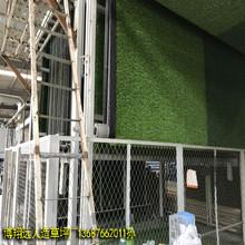 工厂供应仿真塑料草坪加密米兰草图片