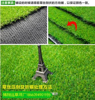 临沂围挡护栏草坪