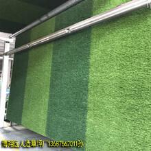 绿色环保足球场人造草皮行业标准图片