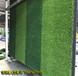 中衛人造草皮足球場施工合同