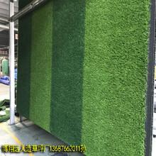 3.2cm高品质高质量人造草坪厂家图片