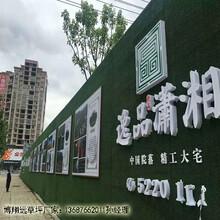 广东省仿真绿植围挡专业生产厂家图片