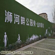 三门峡围挡25cm人造草皮专业生产厂家图片