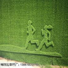 浙江省房地产市政墙面仿真草皮每平米价格图片