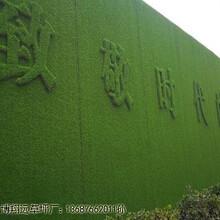 长春绿人工草坪围挡生产厂家图片