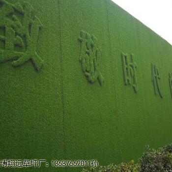 盐城绿色仿真草坪墙面每平米价格