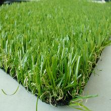 室内高尔夫塑料草坪