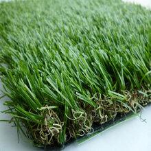 优质的pe+pp人造草坪多少一米