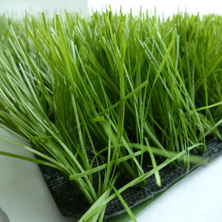 人造草皮生产厂家