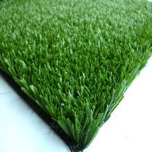 室内高尔夫塑料草坪多少年