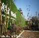 江西围挡草坪制造哪个厂家便宜青岛博翔远BF2012