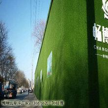 工程围挡绿草皮造价是多少图片