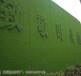 江西塑料草坪围挡造价多少钱青岛博翔远BF2012
