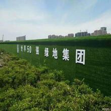 綠色人工草皮房地產市政圍擋