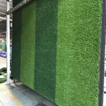 人造草坪厂家图片