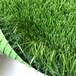 人造草坪pu背膠