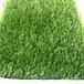 戶外塑料綠色草坪