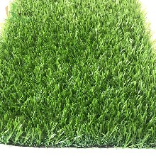 绿化草坪塑料隔离条图片
