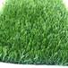 工程圍墻塑料草坪