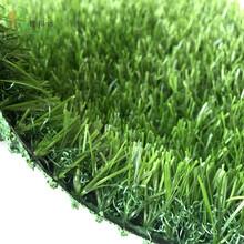 韩国人造草皮图片