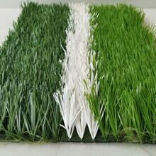 绿皮围挡人造草皮图片