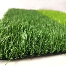 草坪塑料地毯图片