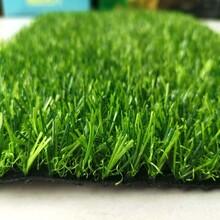 铺足球场的假草坪图片
