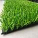阿勒泰人造草坪生產廠家