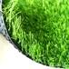 福州人造草坪生产厂家