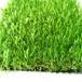 人工仿真草坪
