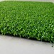 山东省人造草坪生产厂家