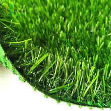 人造塑料草皮图片