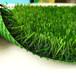 人工塑料彩色草坪
