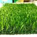 屋頂裝人造草坪