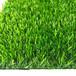 本溪人造草坪生產廠家